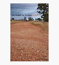 Kaludah Track 1 © Vicki Ferrari Photographic Print