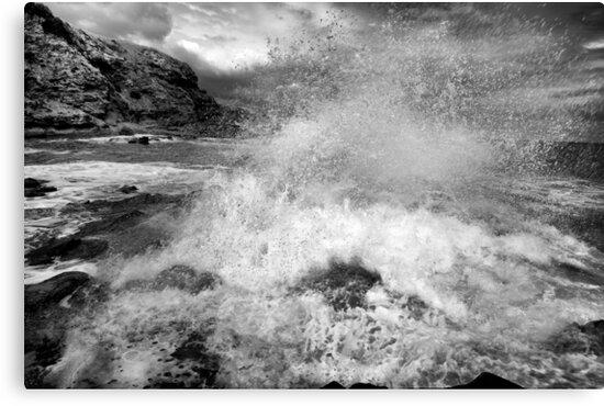 Aqua Dynamics - the beauty of force by Jim Worrall