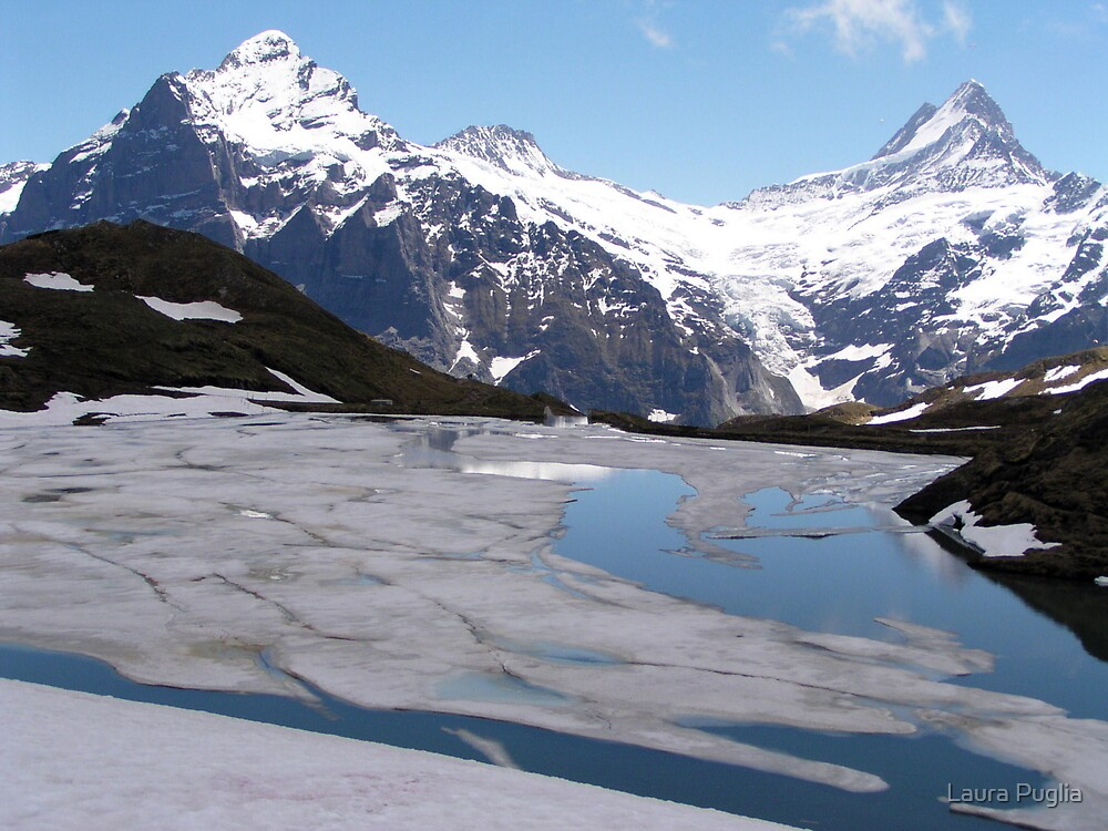 Bachalpensee with Fieschornen in the background, May 2004 by Laura Puglia