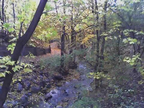 Stream by WaleskaL