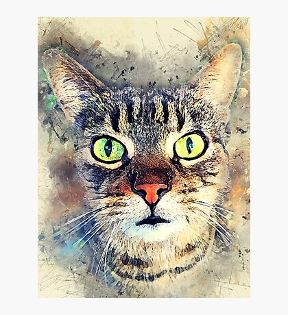 Cat Baxter #cat #cats #kitty Photographic Print