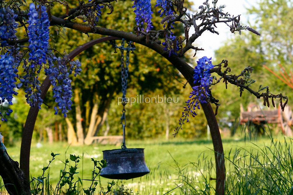 Hanging Around with the Wisteria by Pamela Jayne Smith