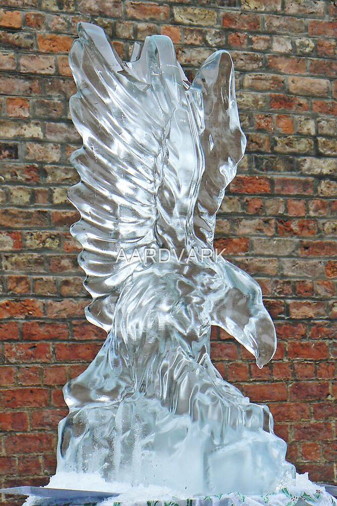 Ice Sculpture by AARDVARK