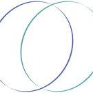 Circles by Bello Designs