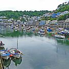 Looking down the Looe by Graeme  Hyde