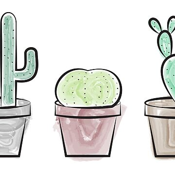 Cacti by ampdesigns