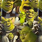 «Shrek» de rainyrainbow