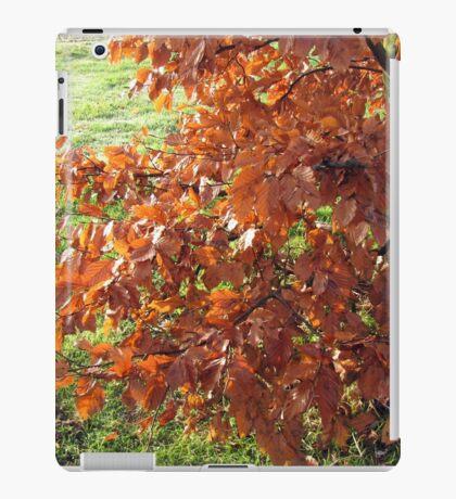 Herbstlaub und mattiertes Feld in Essex iPad-Hülle & Klebefolie