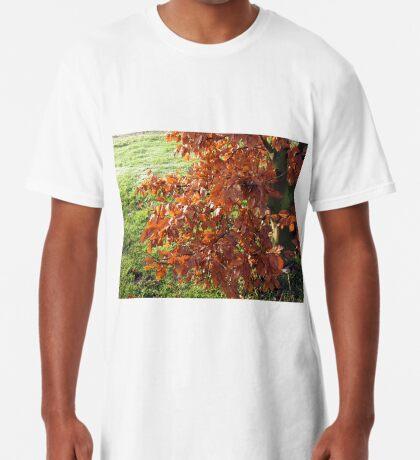 Herbstlaub und mattiertes Feld in Essex Longshirt
