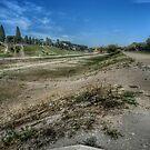 Circus Maximus by hans p olsen