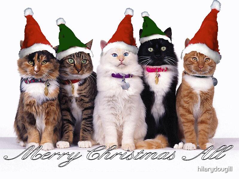 Merry Christmas All by hilarydougill