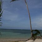 Dominican Republic by WaleskaL