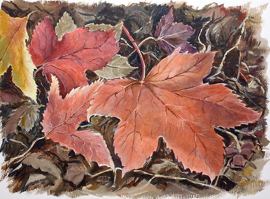 Fallen leaves by Carole Russell