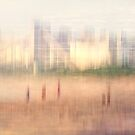 Disappear into the future by Geraldine Lefoe