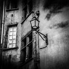 Lyon by Ann Evans