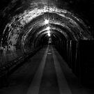 The Darkest Tunnel by Ann Evans