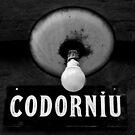 Codornìu by Ann Evans