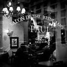 Paul by Ann Evans