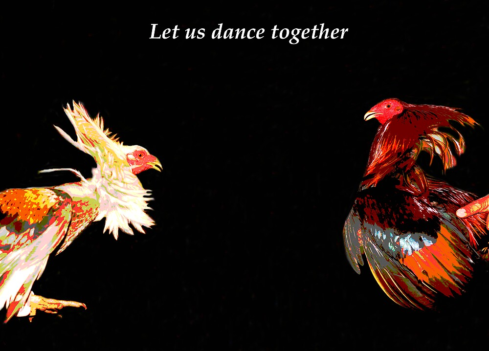 Rooster Dance by Metrius