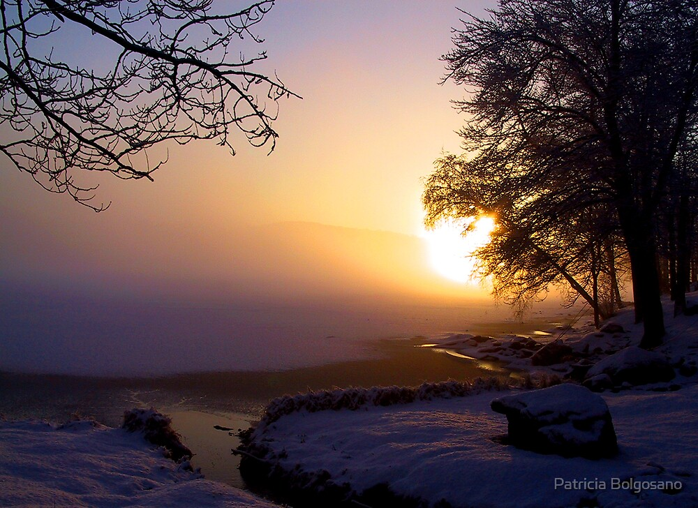 Winter Solstice by Patricia Bolgosano