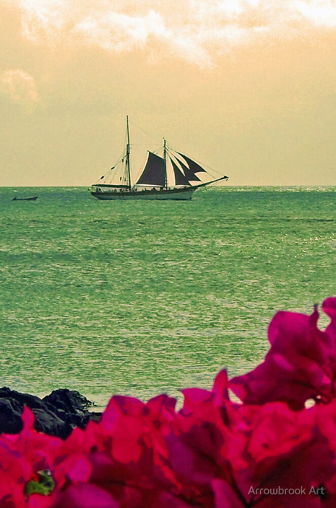 Sailing by John Brotheridge