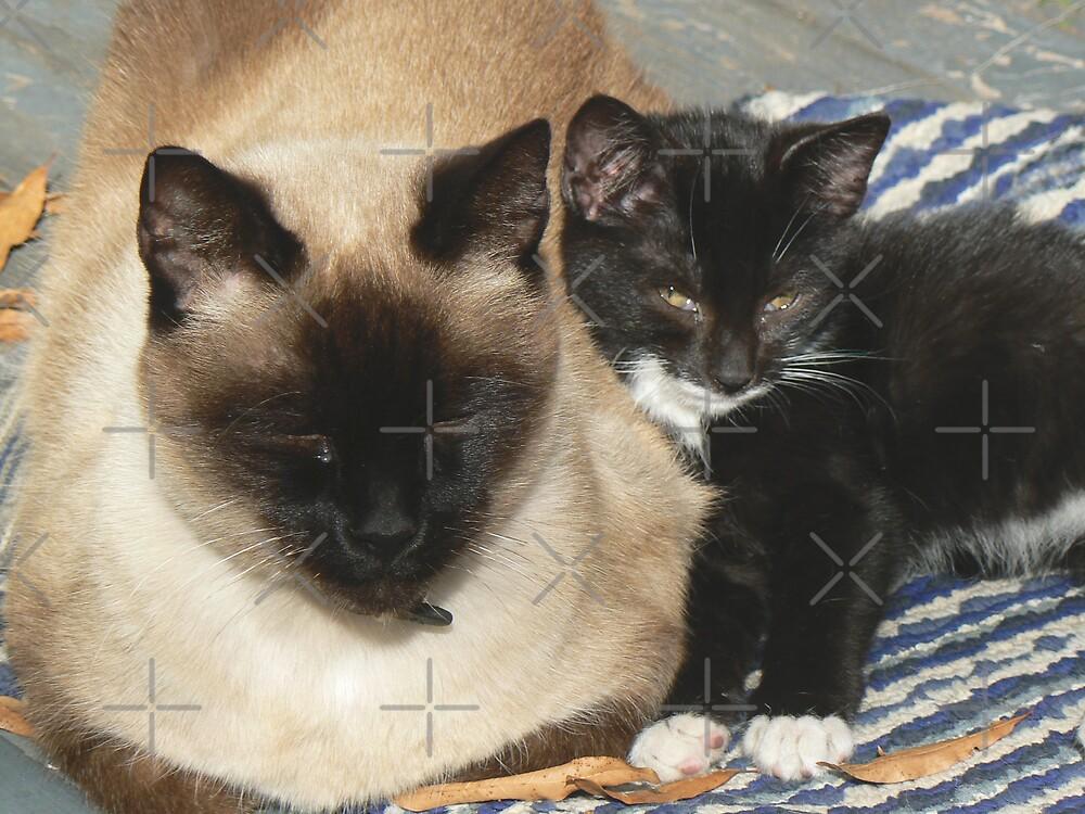 Mr. Wickett & AJ by Sheila Simpson