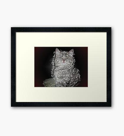 Plastic Cat Framed Print