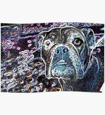 Art Dog Poster