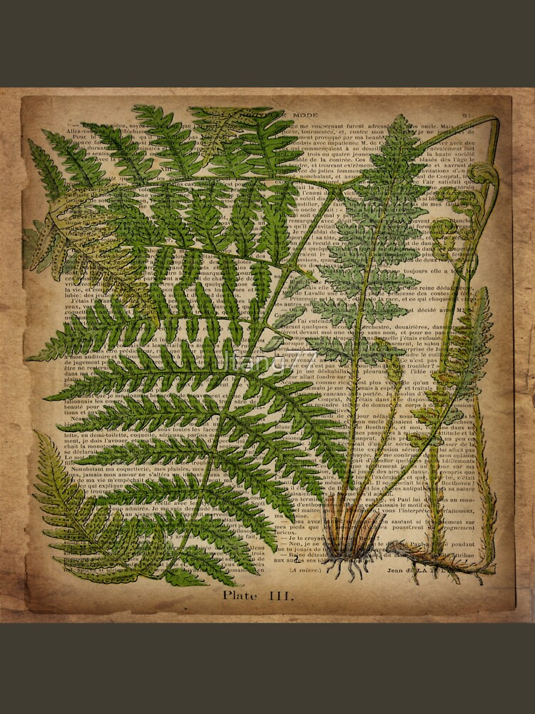 vintage foliage hipster botanical print fern leaves by lfang77