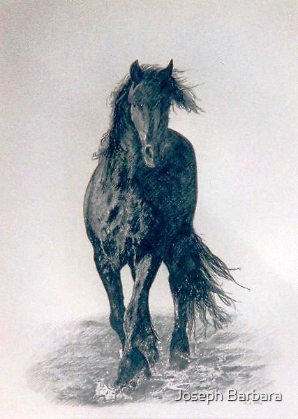 Frisian Stallion by Joseph Barbara