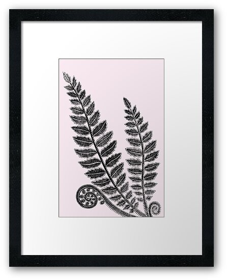 Black lace fern on blush pink background by SilverPegasus