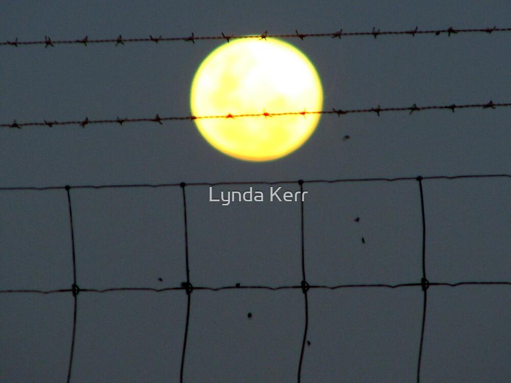 Moon in Sagittarius by Lynda Kerr