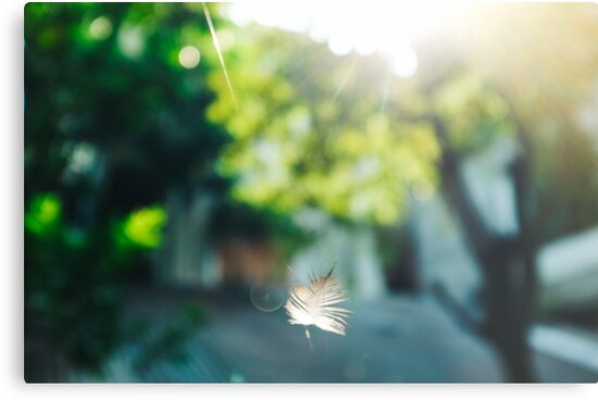 light and feather ii by Fahad Al-Alam