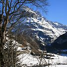 Bernese Alps by BigAl1