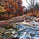 fall creek by Joe Bledsoe