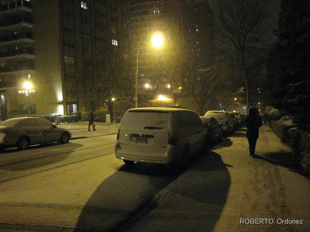 snow 2 by Robert Ordonez