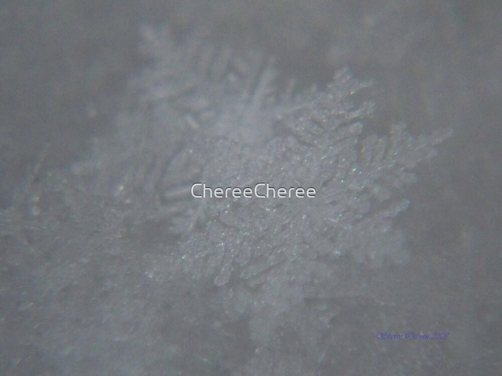 My first Snowflake Shots by ChereeCheree