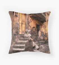 Guanajuato Throw Pillow