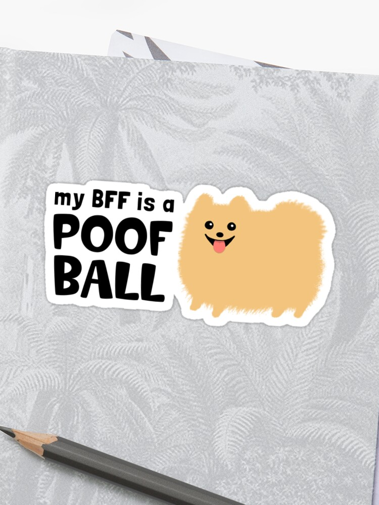 656af878 My BFF is a Poof Ball Pomeranian