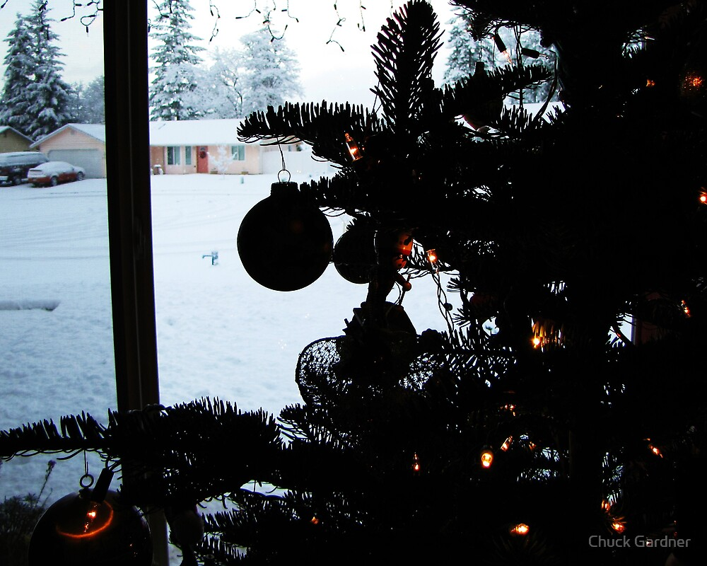 Cozy and Warm Inside! Let It Snow! Let It Snow! by Chuck Gardner