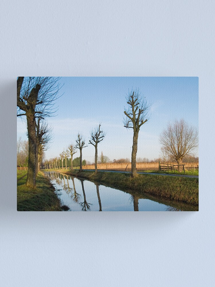 Alternate view of De Lieve Canvas Print