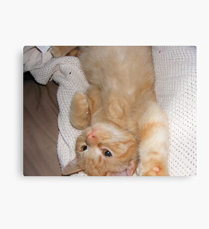 UPSIDE DOWN OLLIE Canvas Print