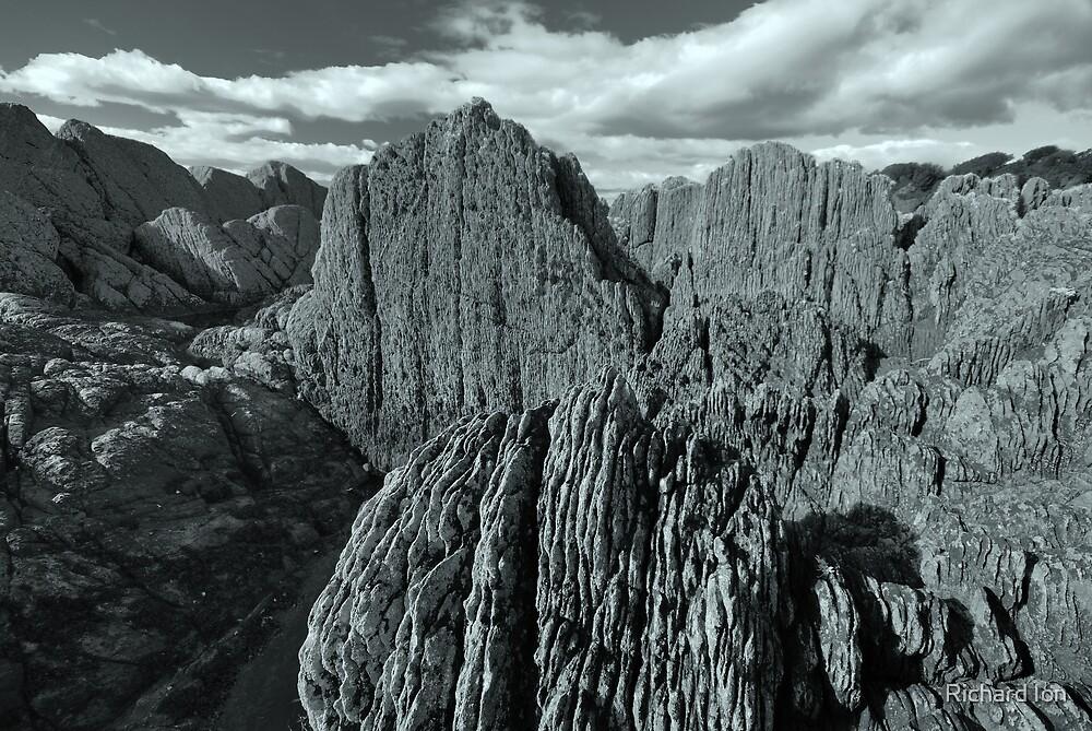 Arran Rock by Richard Ion