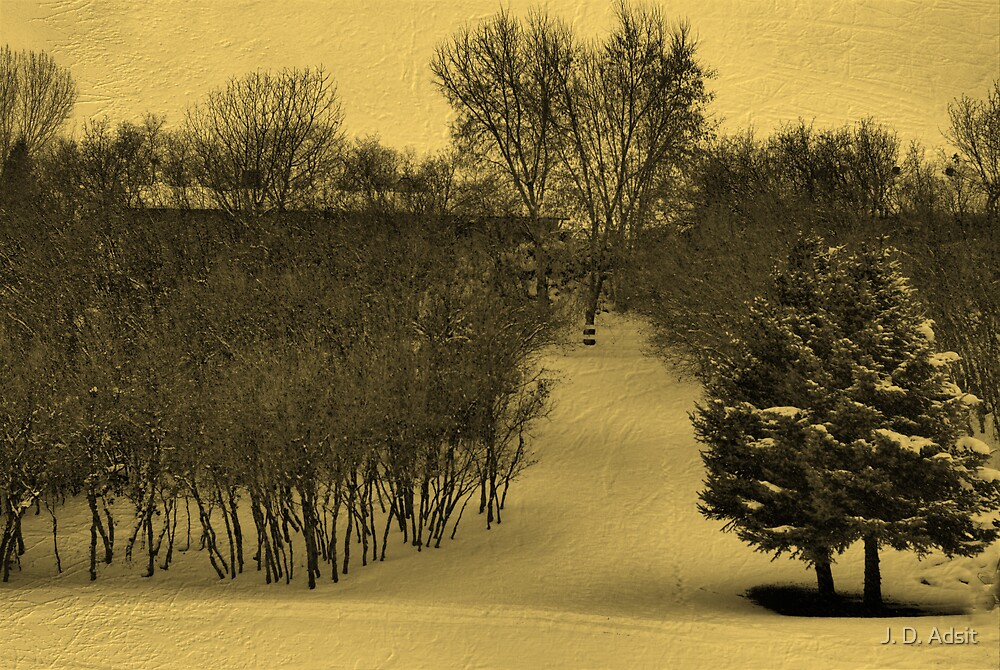 Path to Winter by J. D. Adsit