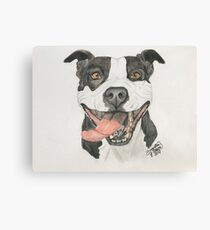 American Pit Bull in Colored Pencil Canvas Print