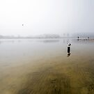The Mist that Tickles the Lagoon by Shaun Colin Bell