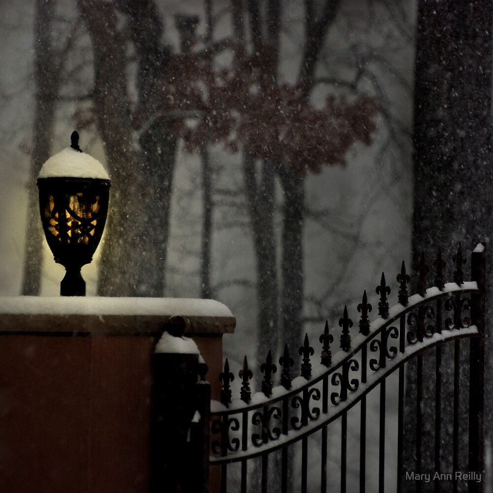 Snow Falling by Mary Ann Reilly