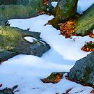Snow Stream by Tibby Steedly