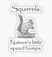 Squirrels Speed Bumps Sticker
