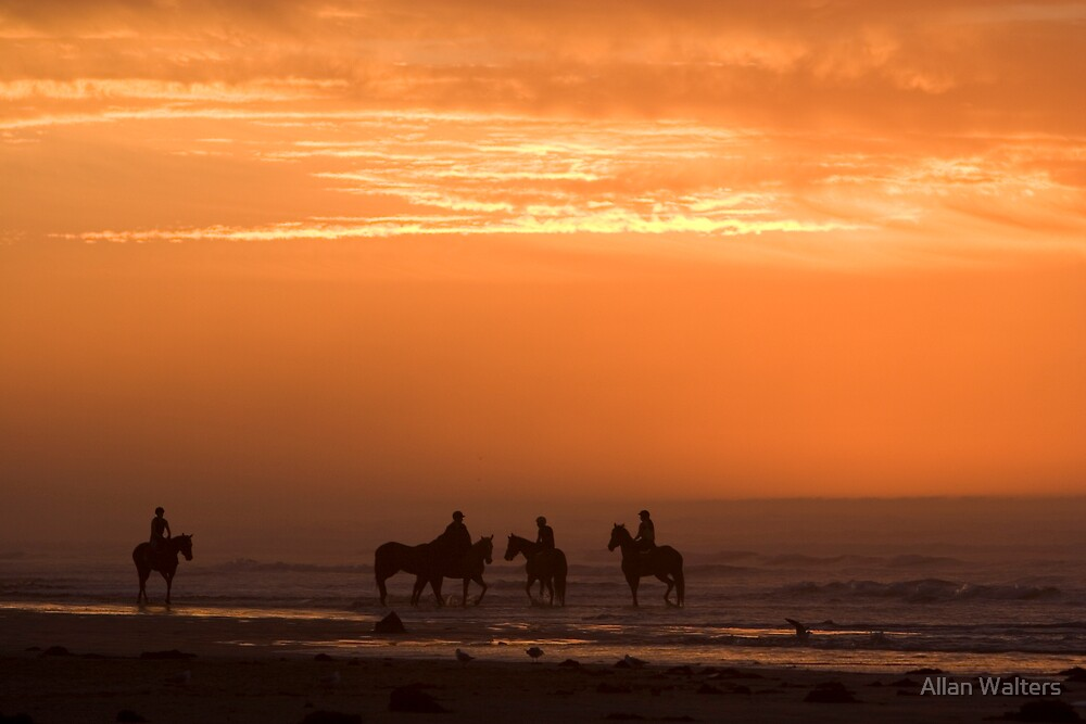 Morning Ride by Allan Walters